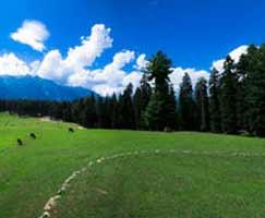 Katra Tourism Package